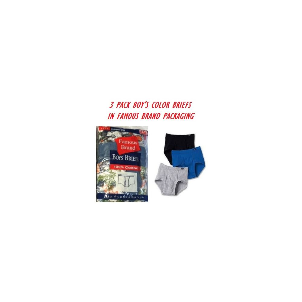 FRUIT LOOM-HANES-GILDAN 3 PK BOYS COLOR BRIEFS IN FAMOUS BRAND PK
