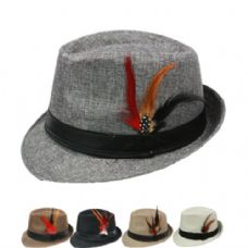 Plain Fedora Hat In Assorted Color With Feather