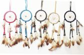 Dream Catcher Collection in Assorted Colors