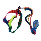 """Rainbow Dog Harness with 48"""" Leash [Small-Wide]"""