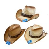 Classic Woven Cowboy Hat [Brown Hat Band/Steer]