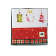 10 Pc Xmas Cards Pvc Box Assorted Designs