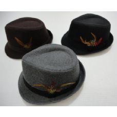 Fedora Hat with Feather