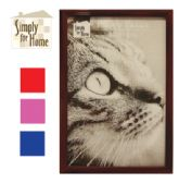 PLASTIC PHOTO FRAME 4 X 6 INCH ASSORTED COLORS