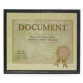 DOCUMENT/CERTIFICATE FRAME 8.5 X 11 INCH